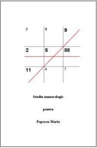 Studiul Numerologic sau Numerograma